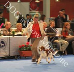 Cormallen Jade group 8 final Sociedad Canina de Alicante